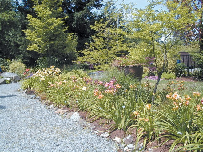 A display garden for the American Hemerocallis Society, maintained by the Puget Sound Daylily Club