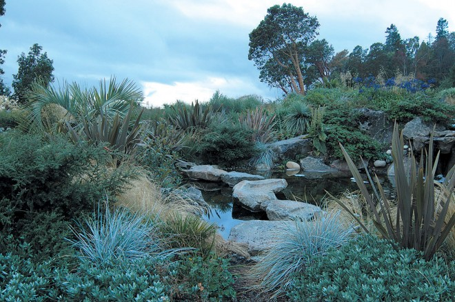 New Zealand flax (Phormium), various grasses, and a hardy palm around a pool next to the ter- race; blue agapanthus flower on the rise. Photographs by Daniel Hinkley