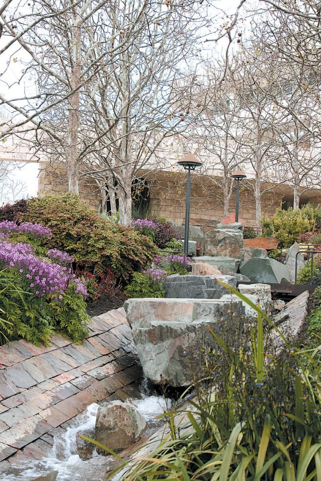 Water cascading over, under, and around the chert boulders of the upper stream provide one of the musical moments in the Central Garden. Author's photographs
