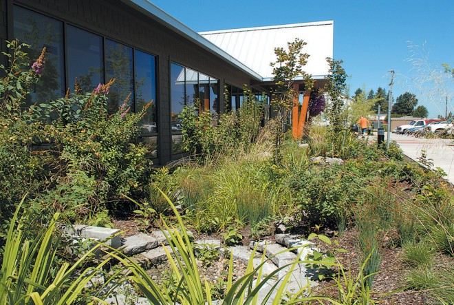 A rain garden at the Estacada Library uses recycled materials and wetland tolerant plantings to transform the foundation landscape into a functional and aesthetic feature. Water from the building downspout is conveyed away from the building to an artistic circular depression where it can pond temporarily as it slowly percolates into the soil. Photograph courtesy of GreenWorks, PC
