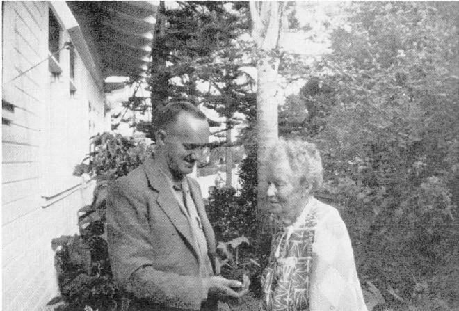 Rudolf Ziesenhenne presenting Begonia kenworthyi to Eva Kenworthy Gray at La Jolla, September 19, 1950. Photographer unknown; reproduced courtesy of the KOLZ collection (Michael Ludwig, curator)