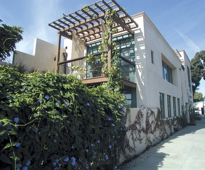 Streetside view of Van Atta Designs offices, with vines softening the architecture. Photograph courtesy of Blackbird Architects