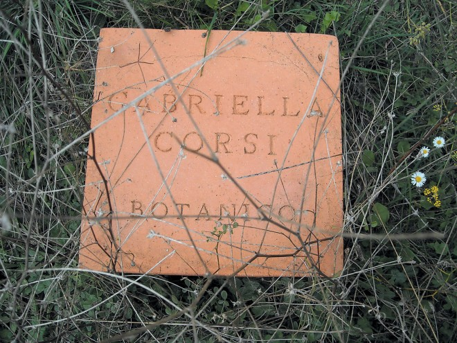 Each terra-cotta cube in the latest work of artist Cesario Carena honors someone integral to the revitalization of Santa Caterina; this cube honors Professor Gabriella Corsi, the botanist who helped create the Orto dei Semplici Elbano