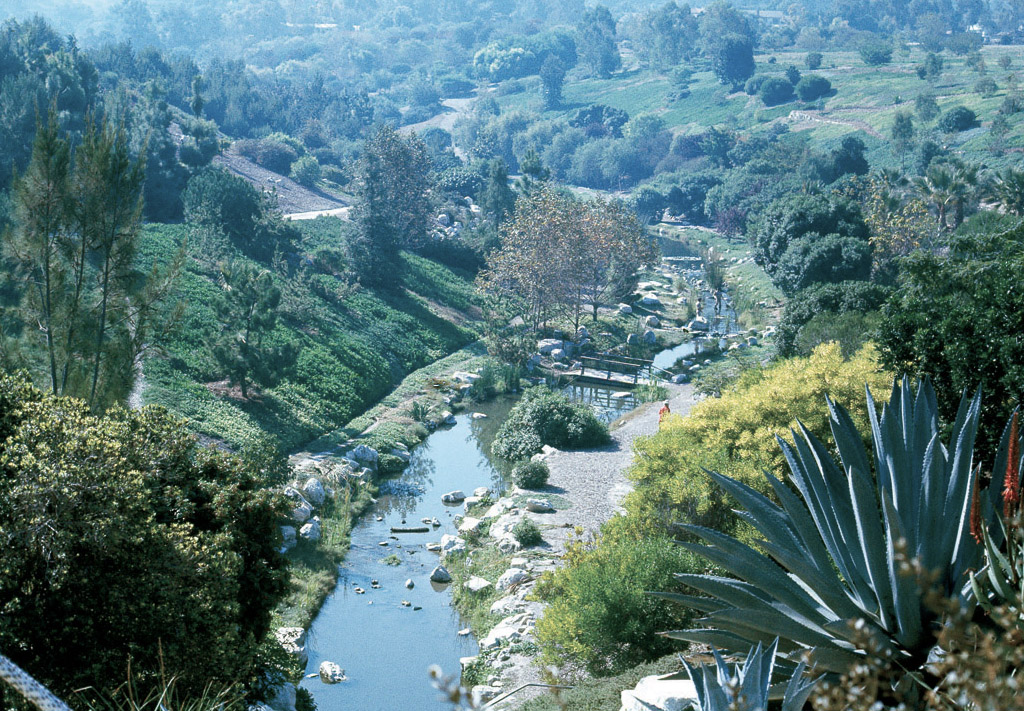 The New Stream At The South Coast Botanic Garden In 1976