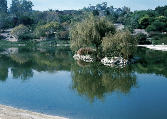 The man-made lake at the South Coast Botanic Garden in 1976