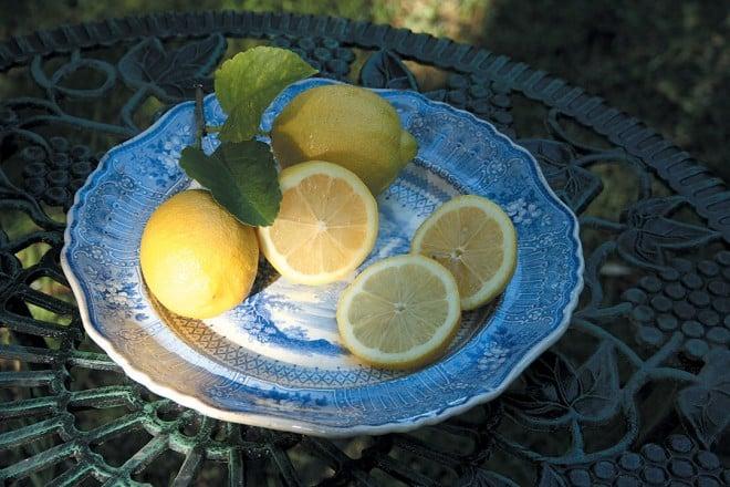 'Eureka' lemons