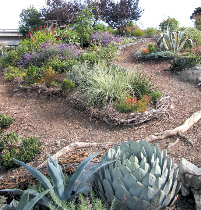 Succulents were clustered at the northern edge of the Pennsylvania Street Garden, where they tolerate heat reflected off a neighboring corrugated metal building; woven twig edgings help define the pathways