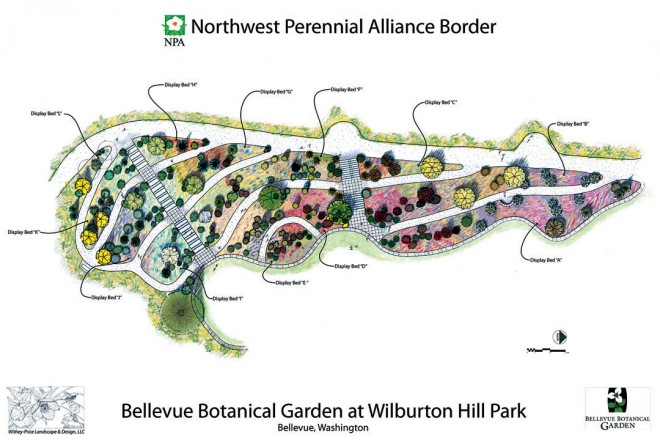Plan of the new Northwest Perennial Alliance Border at the Bellevue Botanical Garden. Design by Withey-Price