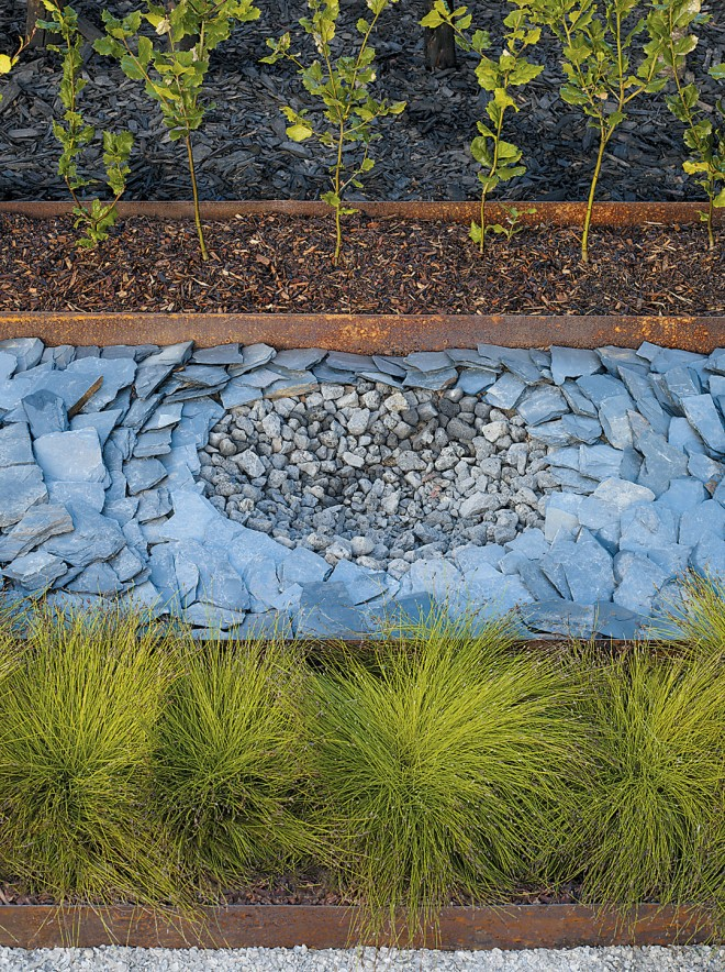 Detail of patterned slate with lava pits, symbolizing the depletion of natural resources; in the foreground is Scirpus cernuus, which has the capacity to remove toxins from the soil