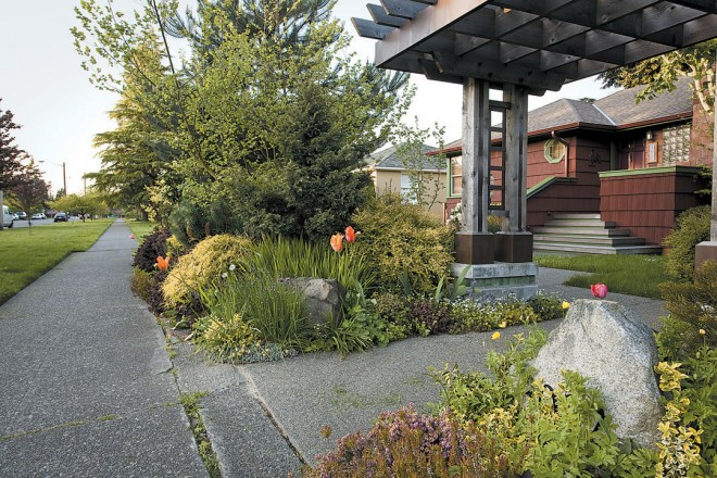 A sturdy entry pergola greets visitors to Jennifer Carlson's Seattle garden; her front garden plants are mostly drought-tolerant, colorful shrubs and perennials that stand out in her Magnolia neighborhood of rockeries and lawns. Photographs by Saxon Holt