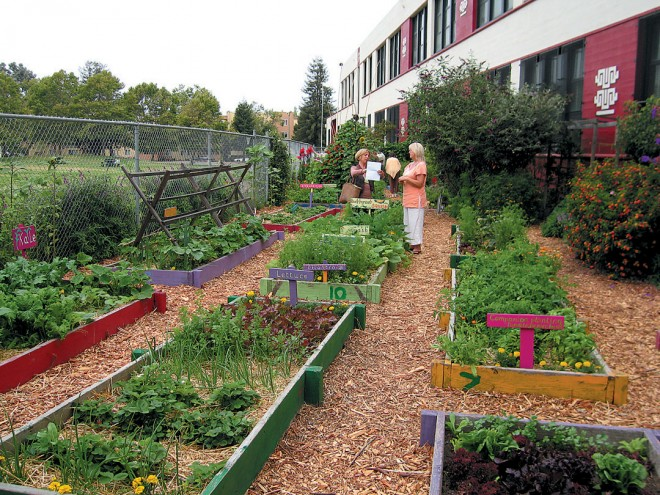 Beds of edibles, whimsically designed, wonderfully productive, and beautifully tended by students in the OBUGS program at Lafayette Elementary School in West Oakland. Photograph by RGT