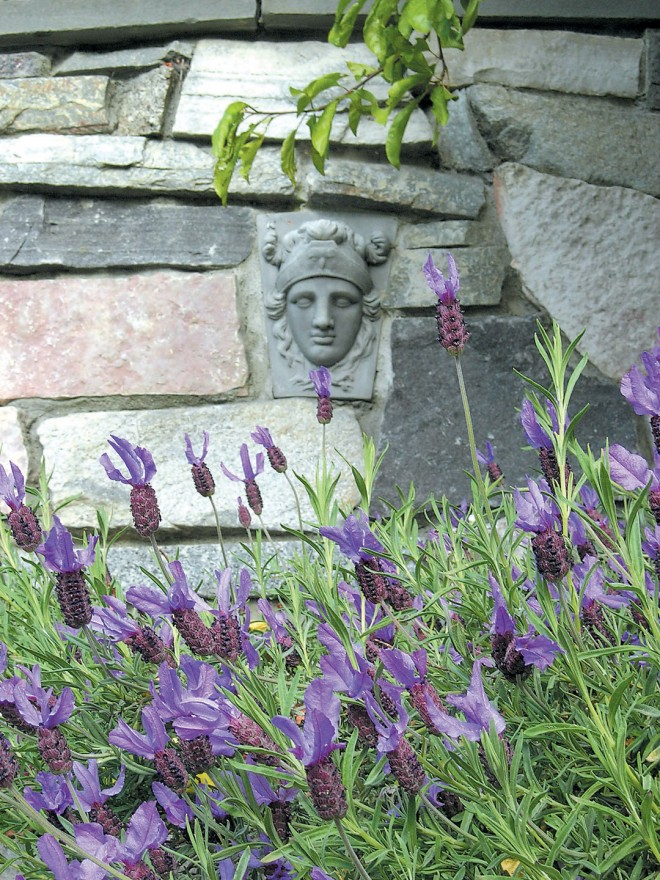 An antique stone face ornaments the dressed granite walls in Mike Knapp's Greenlake Way staircase