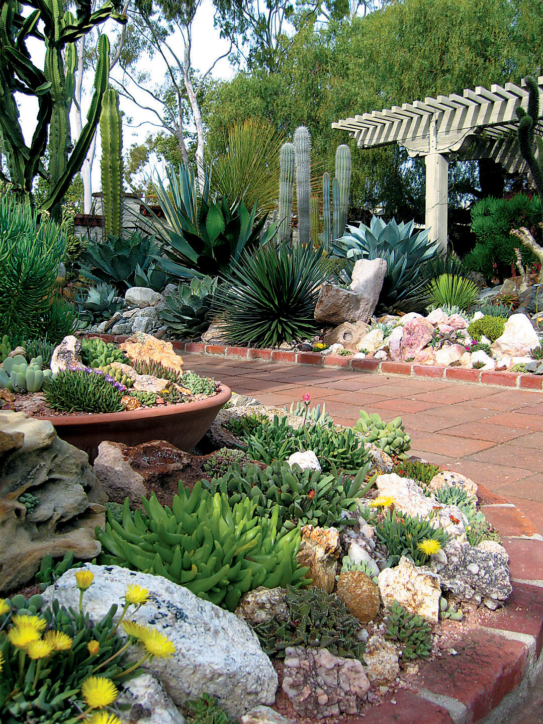 View From The Gate Into Succulent Garden At Sherman Library Gardens Author S Photographs