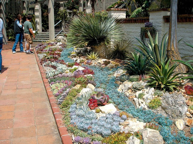 An elaborately ornamental succulent bed adjoining the Garden's other colorful planting beds