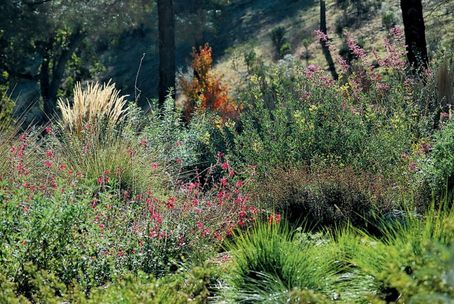 Late fall in a garden designed by John Whittlesey