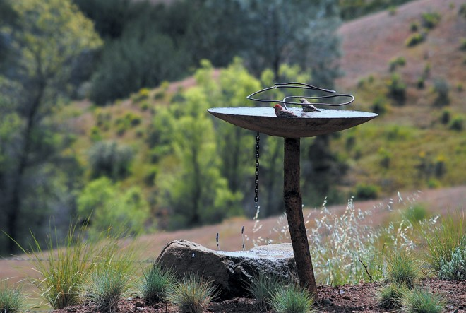 An original birdbath by John Whittlesey, with dripping water to entice the birds