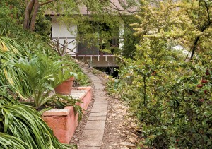 Upper pathway to studio, cut along the slope