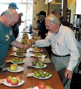 The author (l) offering an apple to Dr Robert Norton (r) at the annual Apple Tasting Celebration. Photograph by Steven Bradford