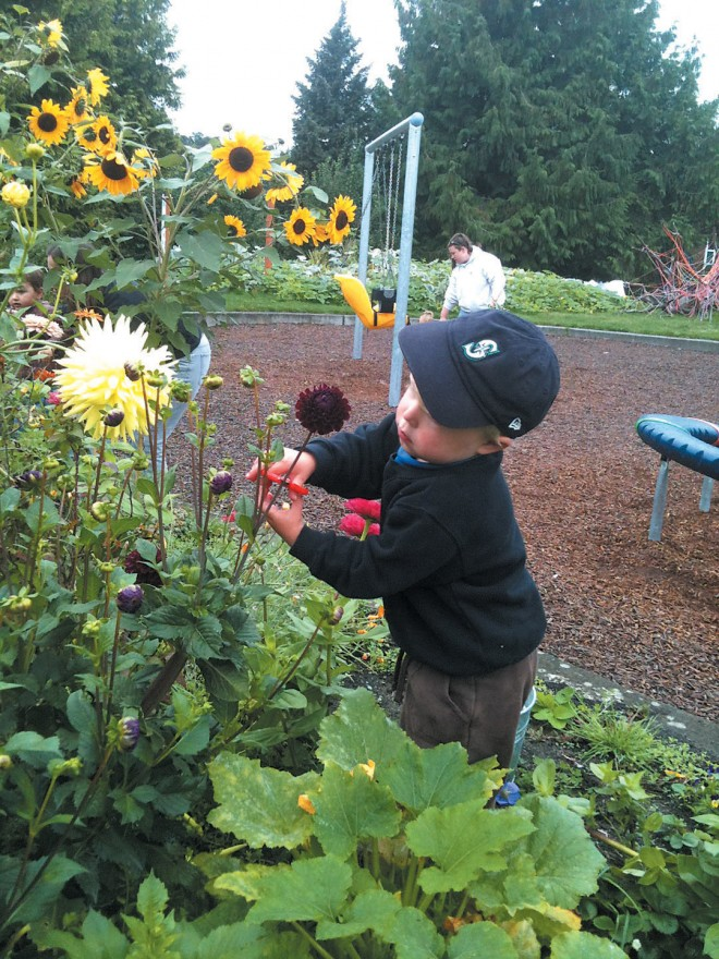 A young flower lover at the Seattle Children's PlayGarden