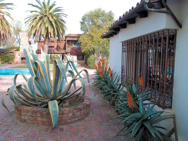 Brick planting wells in the main courtyard once held full-sized 'Eureka' walnut trees but now contain variegated century plants (Agave americana 'Marginata')