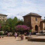 Paved and planted areas in an Alhambra plaza