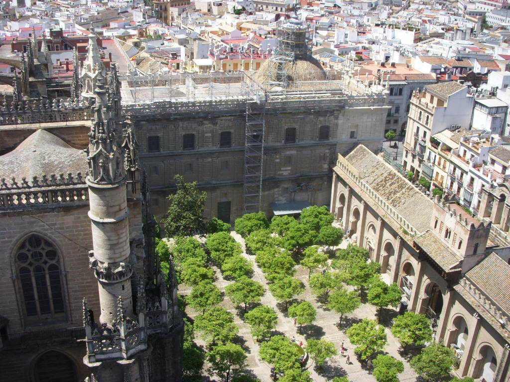 An orchard within the walls of a Cathedral in Seville.