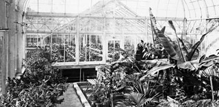 conservatory-feature