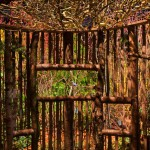 Detail of the bird blind. Created by The Arboretum at Washington Park, Seattle Audubon. Designed by Bob Lily, Phil Wood, and Roger Williams. Photo: courtesy of the NWFG show.