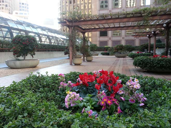 This colorful rooftop garden at Crocker Galleria features quiet seating areas and colorful plantings. Accessible during Galleria hours. Photo: Zann Cannon Goff