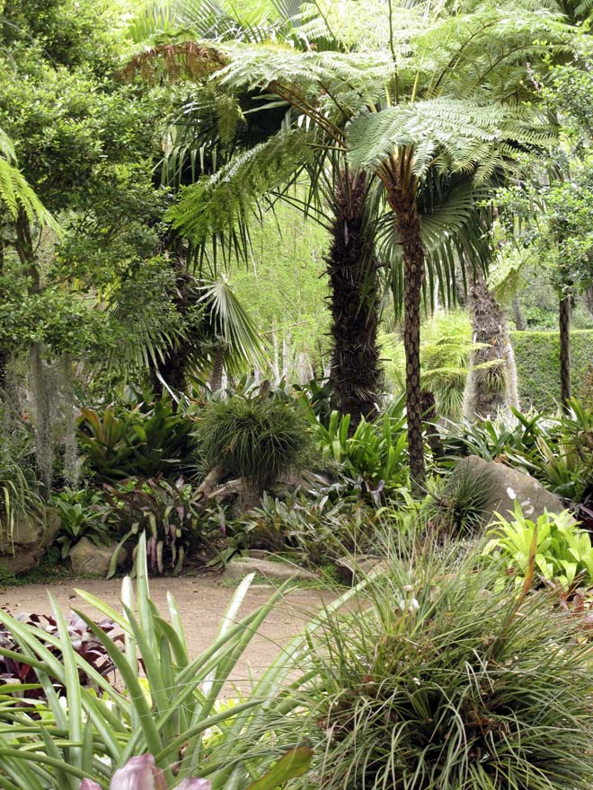 The tropical garden at Lotusland.