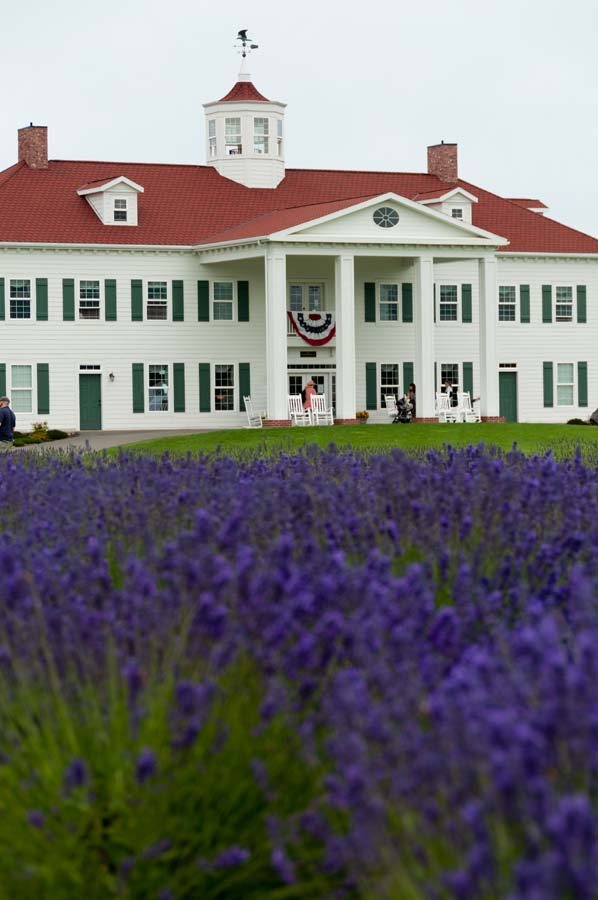 Pacific Horticulture Society | Lavender Farm Faire