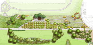 BeaconFoodForest_planfeature