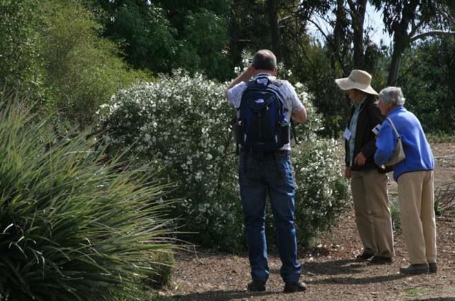 Ginny Hunt (in hat) one of the Summit's organizers and owner of Seedhunt.com, a specialty seed supplier, and Betsy Clebsch, author of The New Book of Salvias: Sages for Every Garden (Timber Press, 2003) chat with other Salvia Summit II attendees and try to identify interesting plants at the Fullerton Arboretum. Photo: Jennifer Jewell