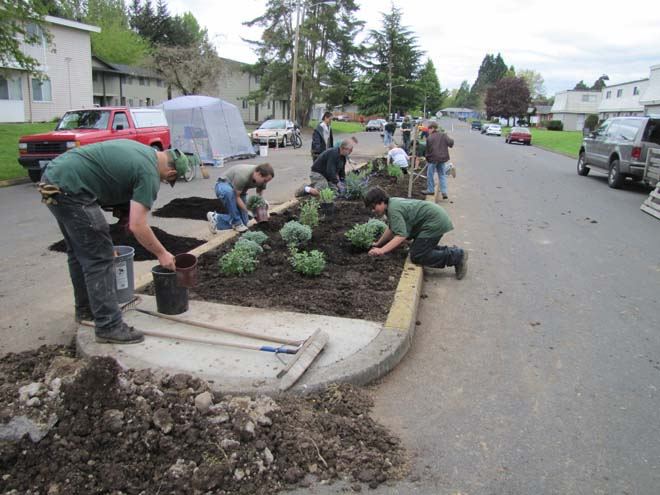 James Sorrels, assisted by his Eagle Scout troop, installed the Knox Street demonstration garden in spring of 2012. Photo: Neil Bell