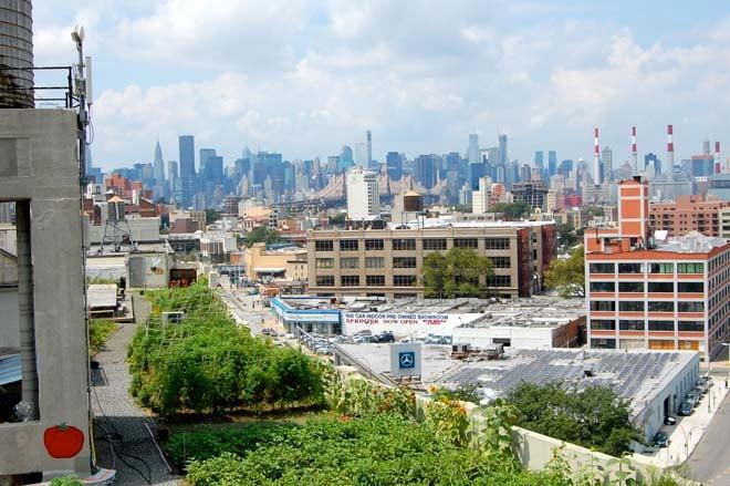 The Brooklyn Grange against the Manhattan skyline. Photo: Dan Corum
