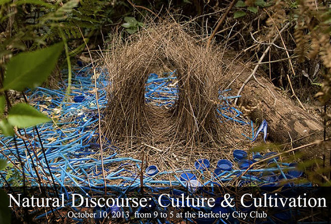 Natural-Discourse13