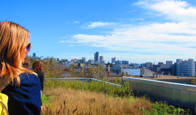 Touring the Drew School green roof in San Francisco. Photo: Kay Cheng, SF Planning Department