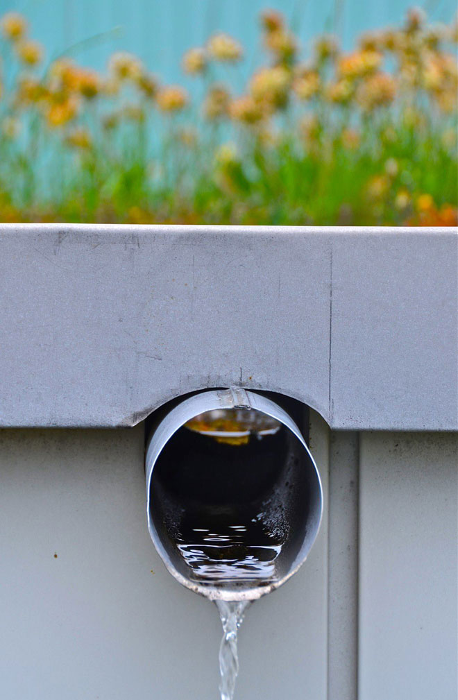 A simple overflow system ensures drainage and water transfer between planted roof areas at the Sihlcity shopping mall in Zurich, Switzerland. Photo: Jeff Joslin