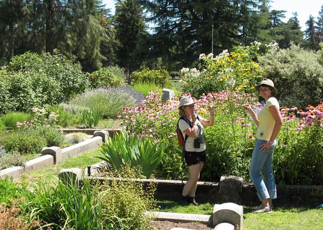 Lab assistants, Jaime Pawelek and Melissa Steele-Ogus, monitoring bees in the Sacramento Historic City Cemetery. Photo: courtesy of the UCB Urban Bee Lab