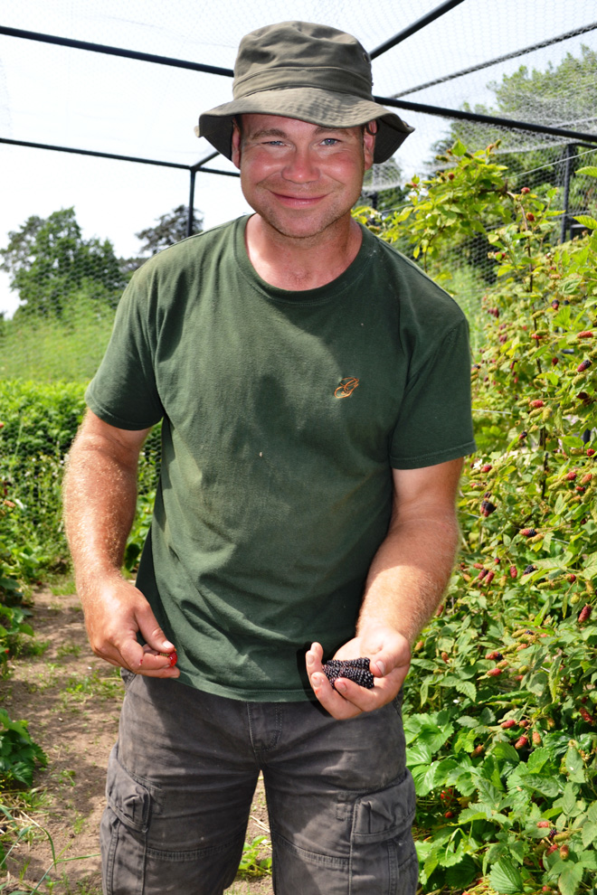 Gravetye Manor head gardener, Tom Coward, offers berries from the walled garden. Photo: Nancy Carol Carter