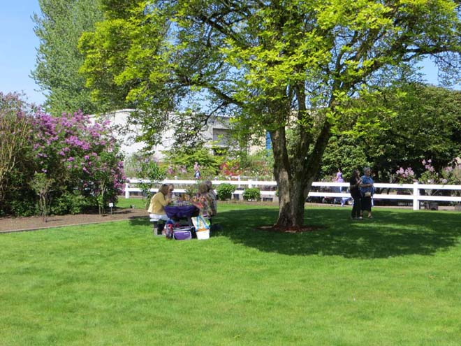 Visitors to the Hulda Klager Lilac Gardens take advantage of spring picnicing weather. Photo: Forrest Campbell