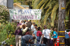 Plant-Exchange-Group