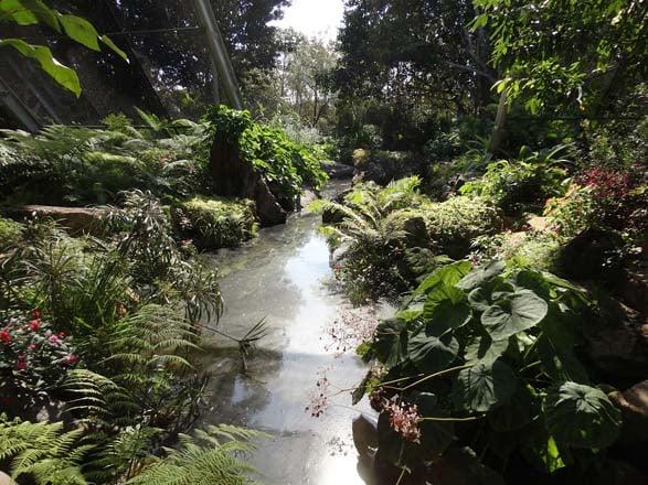 Jardin Botanico Nacional. Photo: Greg Graves