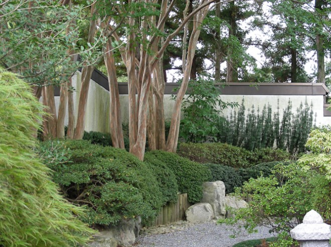 The subtle beauty of a Japanese garden is, in part, due to the restrained use of a limited plant palette.  Photo: Billy Goodnick