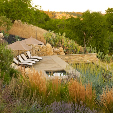 'Winery Residence' in Paso Robles, Califonia designed by JGS Landscape Architecture. Photo: Chris Leschinsky