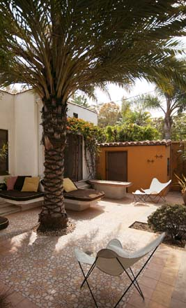 Today the date palm (Phoenix dactylifera provides welcome shade to the pool deck and the bougainvillea densely covers the awning over the master bedroom. Photo: Jeff Dunas
