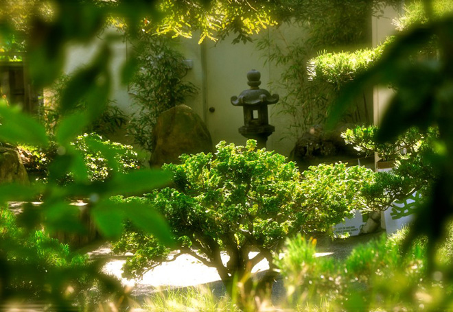 The Japanese Garden.  Photo: Tora Rocha