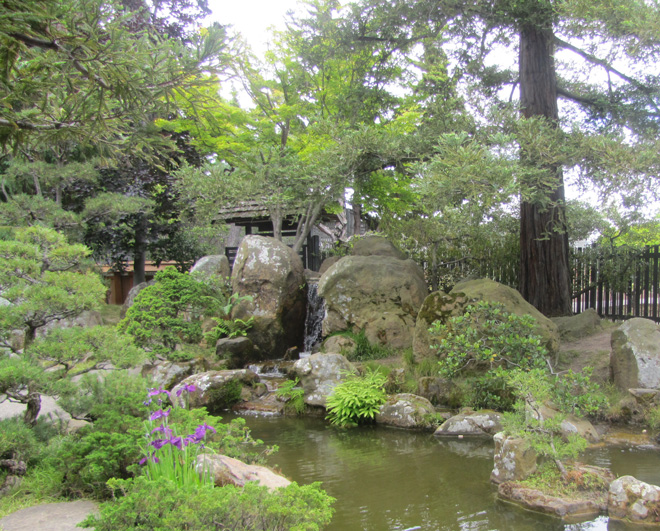 A naturalistic vignette of water, stone, and plants in the tranquil Japanese Garden.  Photo: Tora Rocha