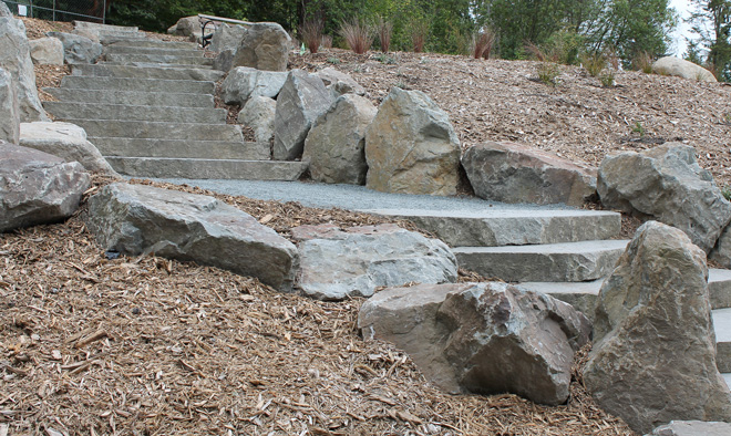 The carefully set sliced-boulder stairway ascends and retains a steep slope in the New Zealand at the Washingon Park Arboretum. Photo: courtesy of Berger Partnership