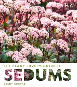 sedum-book